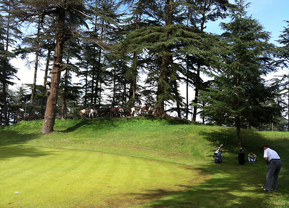 golf-course-naldehra-shimla