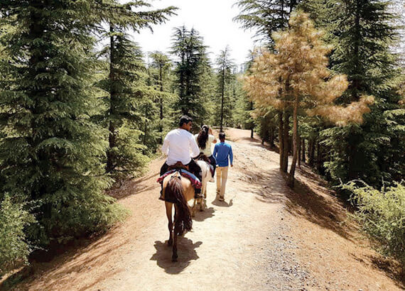pony-ride-naldehra (1)